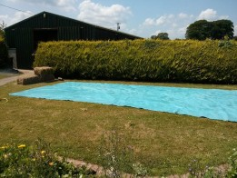 piscina in curte.piscina facuta acasa